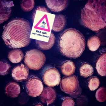 do not climb the tree sign on a stack of tree trunks